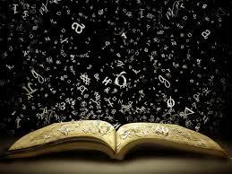 libro palabras