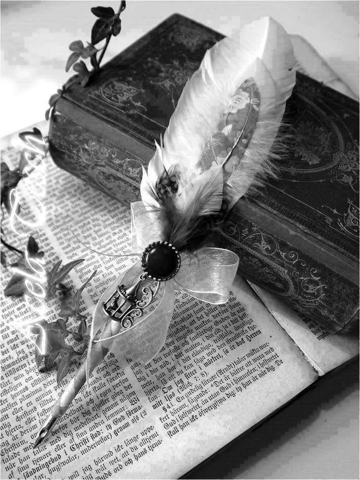 libro pluma