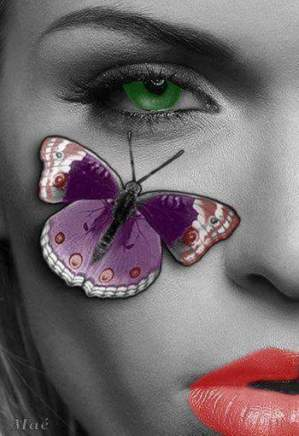 mariposa (9)
