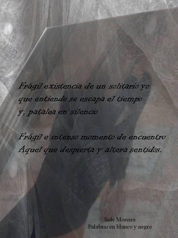 fragil-momento